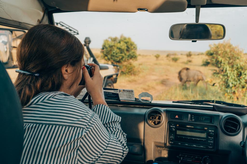 Capturing photo of Male lion Masai Mara