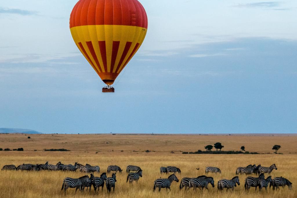 a hot air balloon over zebras in kenya