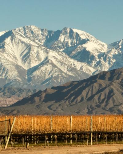 Mendoza Argentina Wineries
