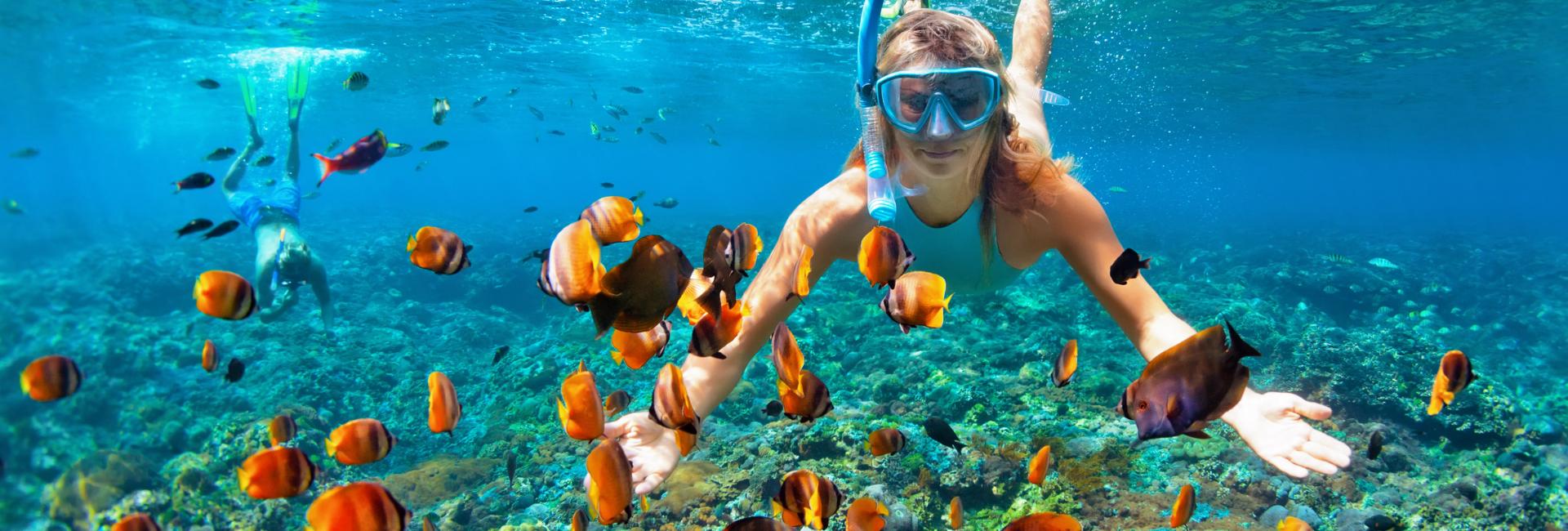 woman snorkeling through orange fish in hawaii